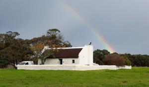 cot 5 rainbow