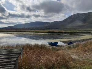dam 2 winter 2019