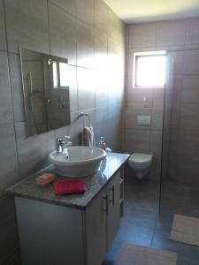 flat 7 toilet